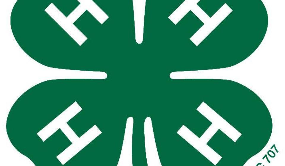 4-H Camps canceled